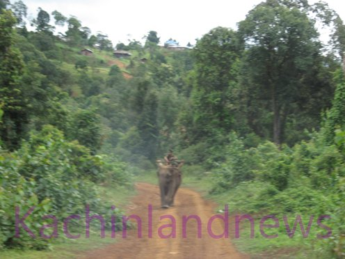 Kachinland-News-Battles-Rage-in-Kachin-State-Burma
